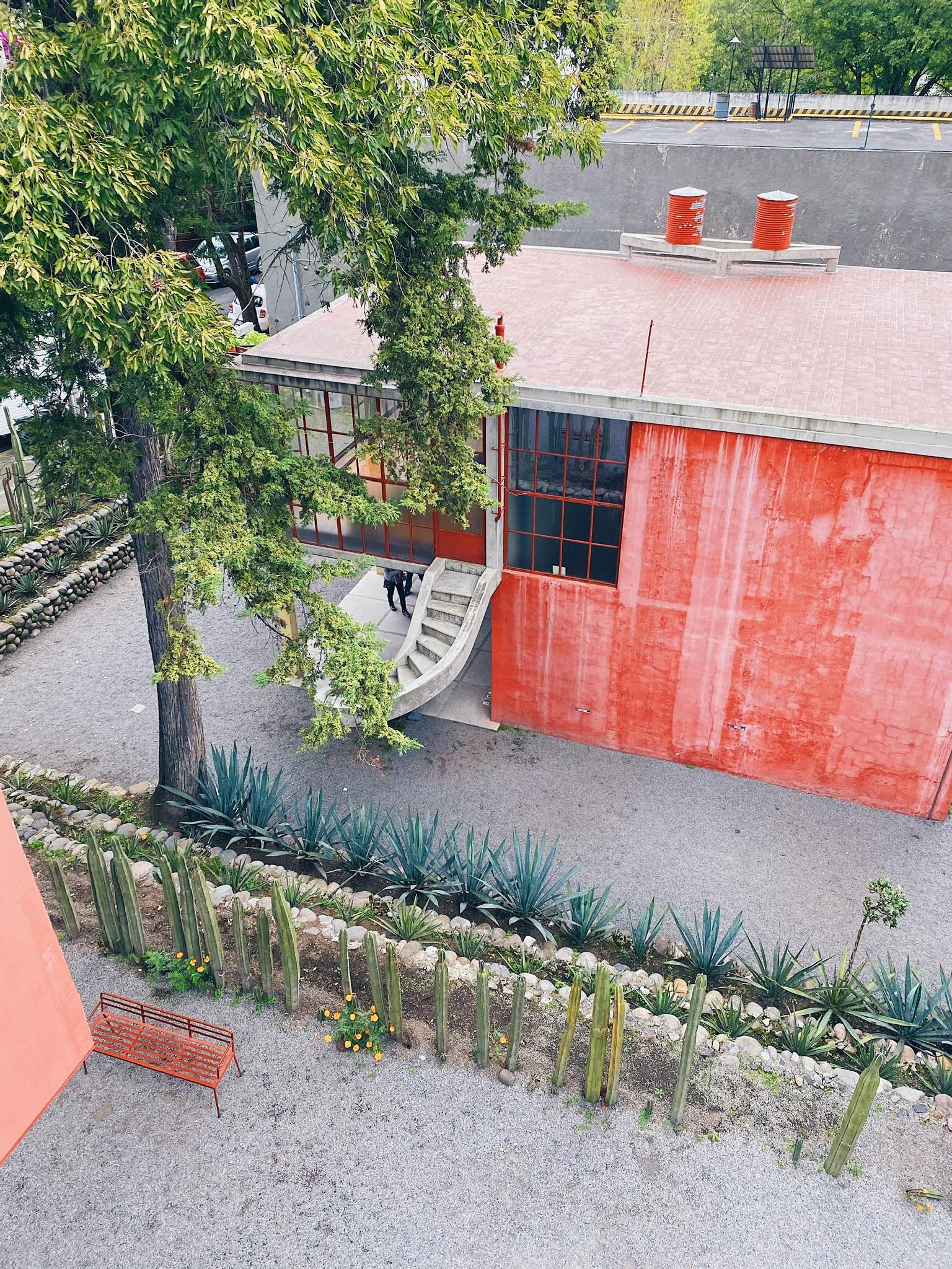 wu-haus-guide-to-mexico-city-cdmx-alison-wu-casa-estudio-diego-rivera-frida-kahlo