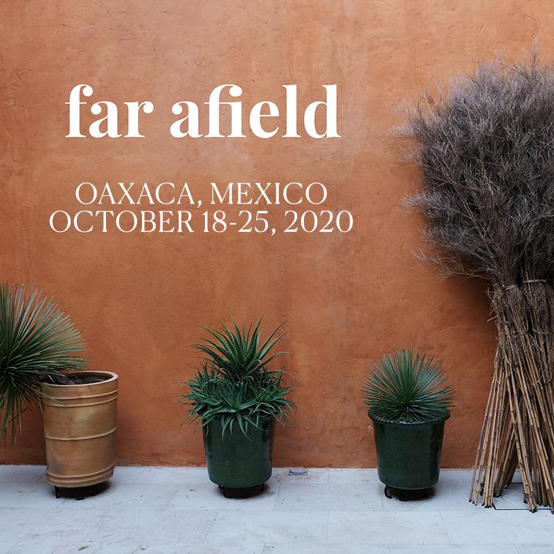 oaxaca-retreat-wu-haus-alison-mexico