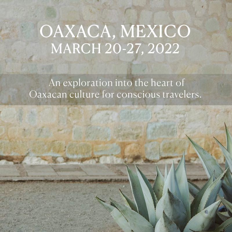 wu-haus-oaxaca-retreat-mexico-2022-alison
