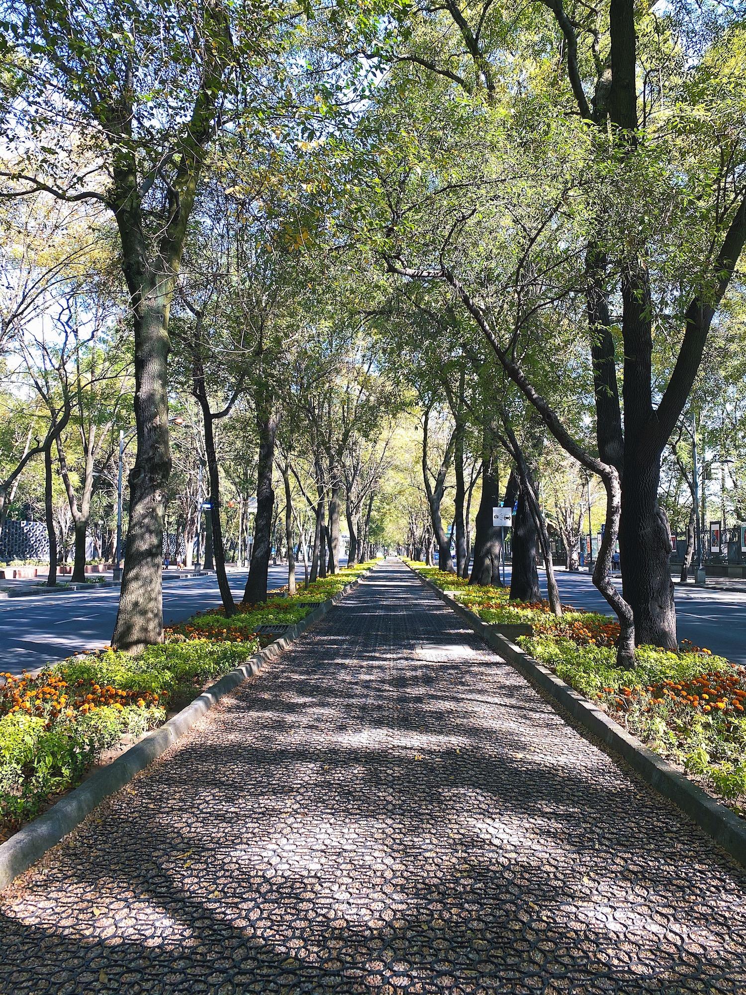wu-haus-mexico-city-guide-reforma