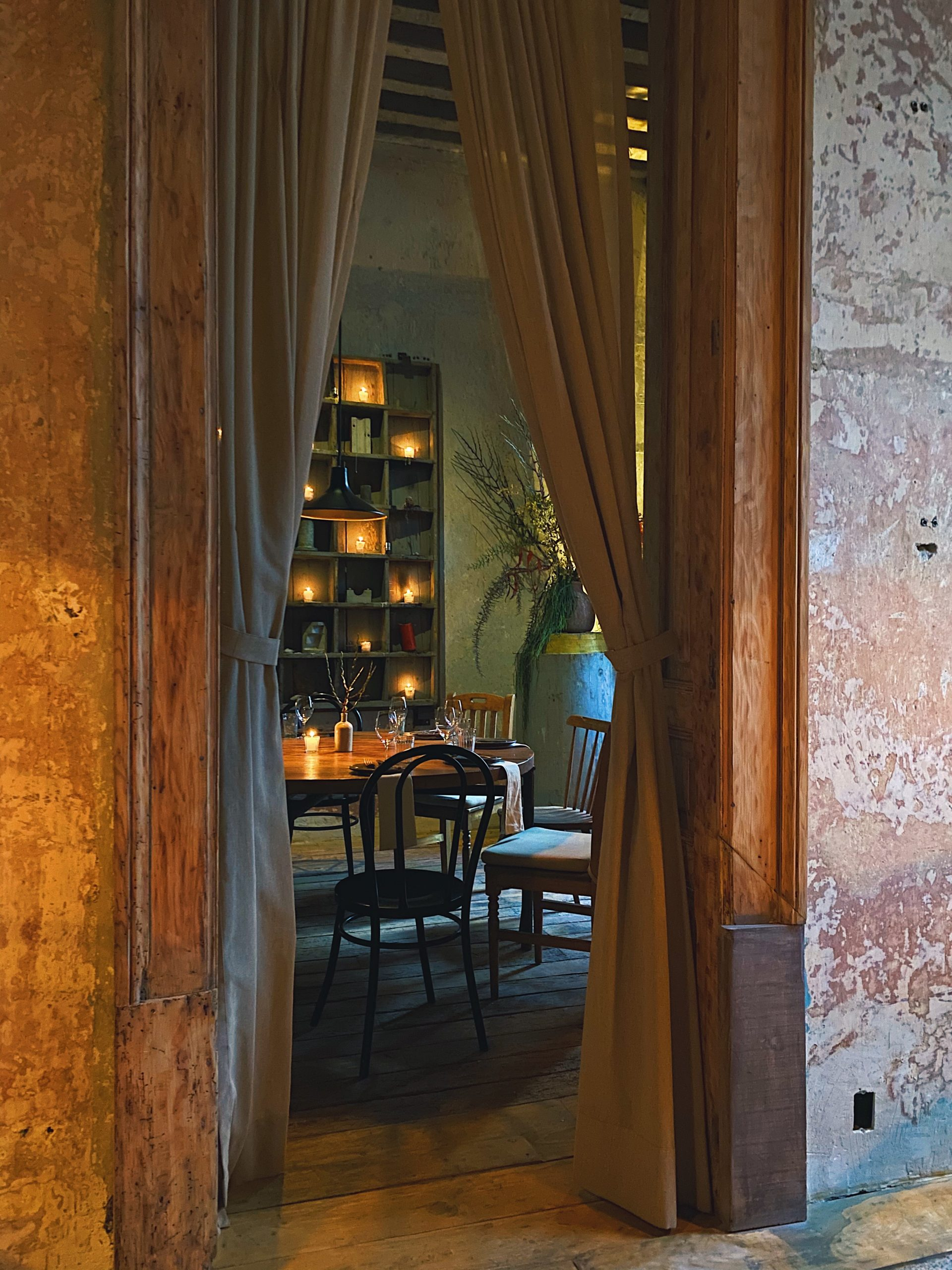 wu-haus-mexico-city-guide-food-taverna-cool-place