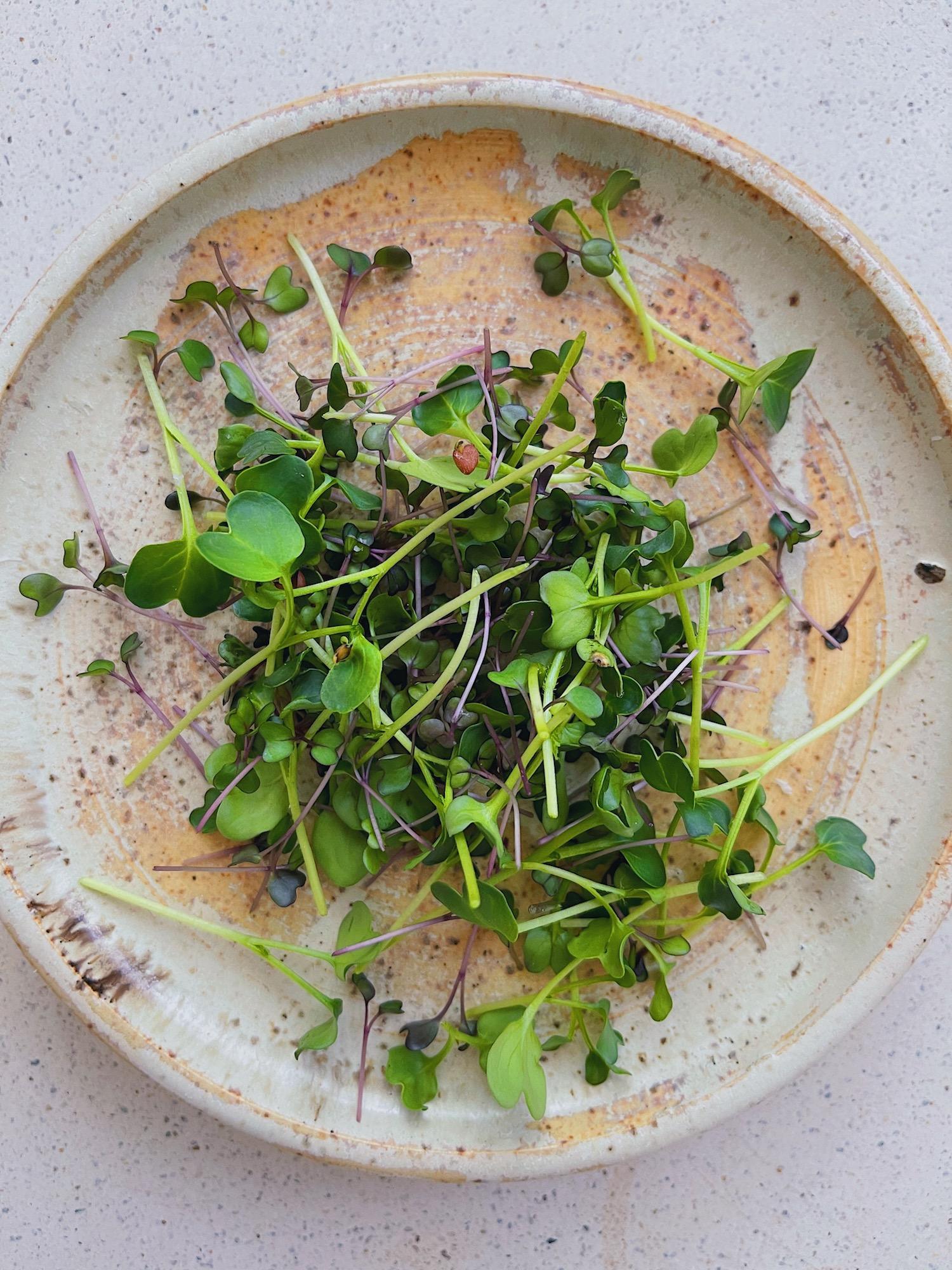 wu-haus-recipe-vegan-broccoli-caesar-food